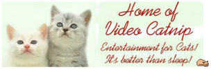 Video Catnip - DVD Movie For Cats To Watch - On SALE!